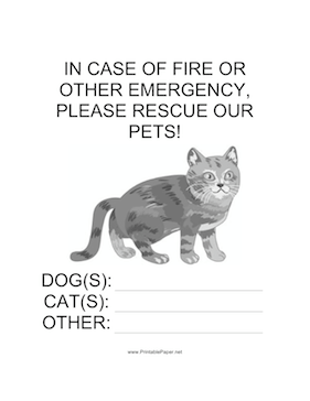 Emergency Rescue for Cat Sign